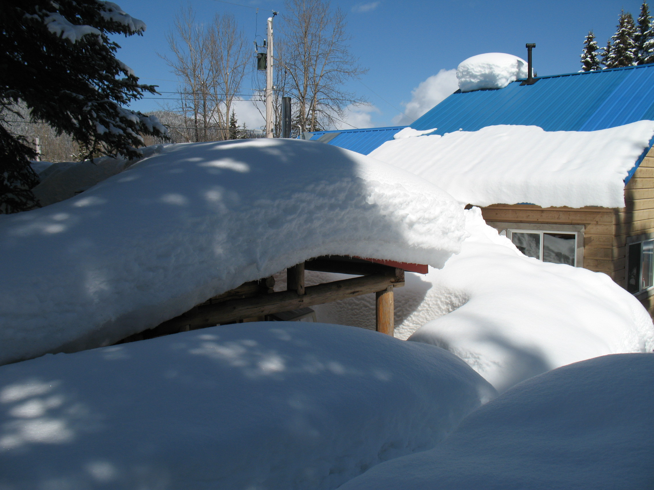 The view of the snowbank that covers the back of the clinic/sauna/cob oven shack.