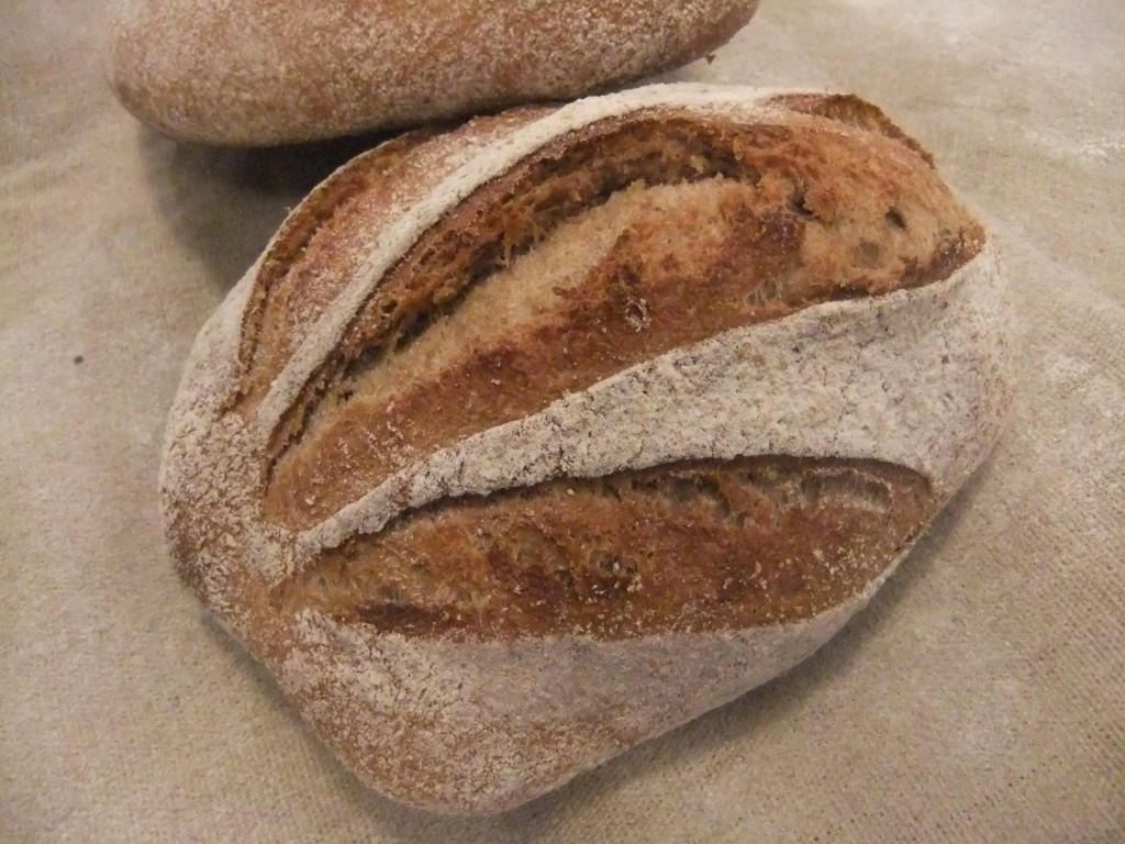 Spelt bread. A delicious and healthy 100% whole-grain bread. Selling like hotcakes!