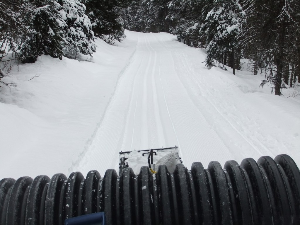 Tim's new-found labour of love: setting cross-country ski tracks.
