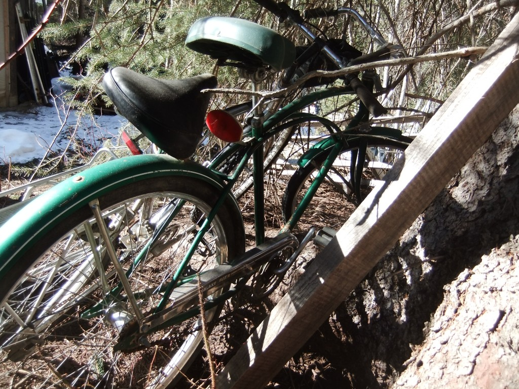 Ahem. A very cool single-speed green bike. I couldn't help but notice it because the chickens like to hang out just near it.