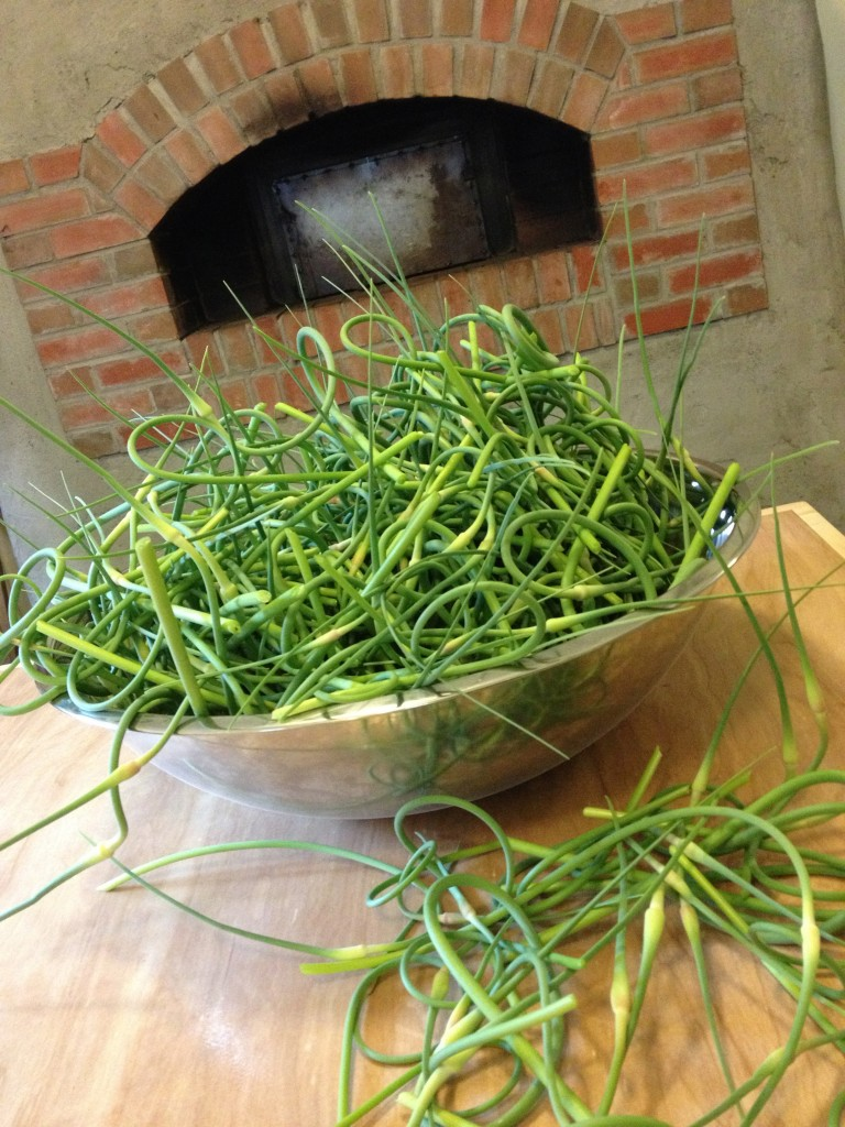 Garlic scapes - the ultimate in local and fresh food! Get ready for some scrumptious garlic scape pesto on the pizzas this week.
