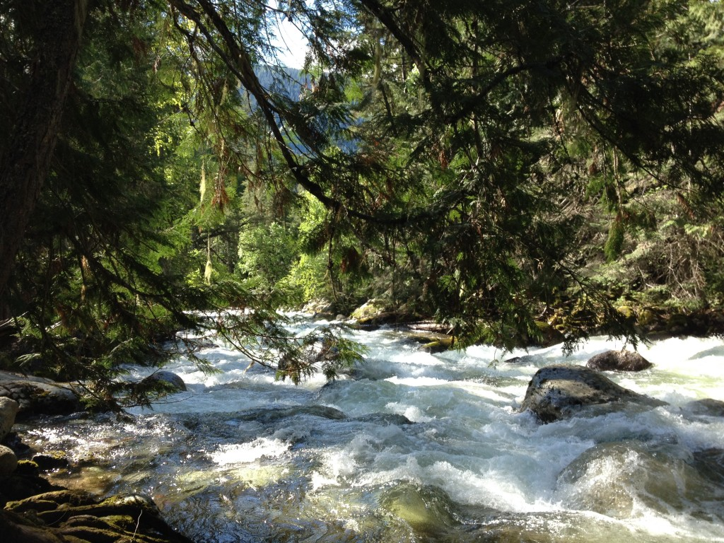 Kokanee Creek in spring flood - coming directly off the Kokanee Glacier in Glacier National Park.